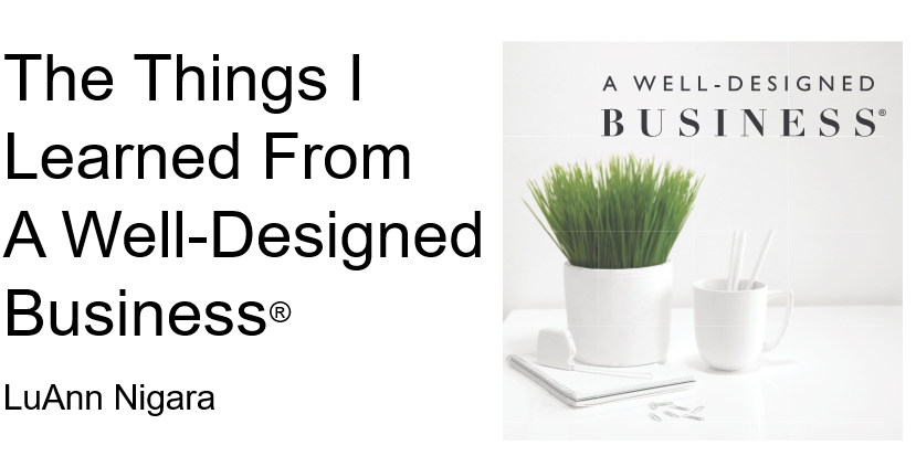 168: Power Talk Friday – LuAnn Nigara- The Things I Learned From A Well-Designed Business- Part 2 of Design Bloggers Conference Presentation