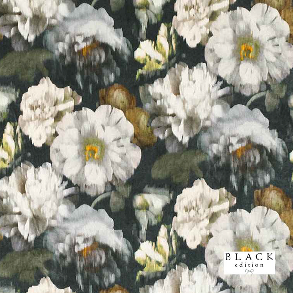 Black Edition Herbaria Obsidian