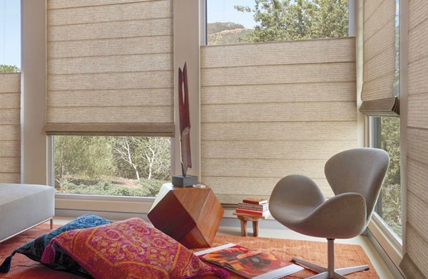 Hunter Douglas Shades NJ